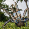 20180914_coconut_crab_catch_00058